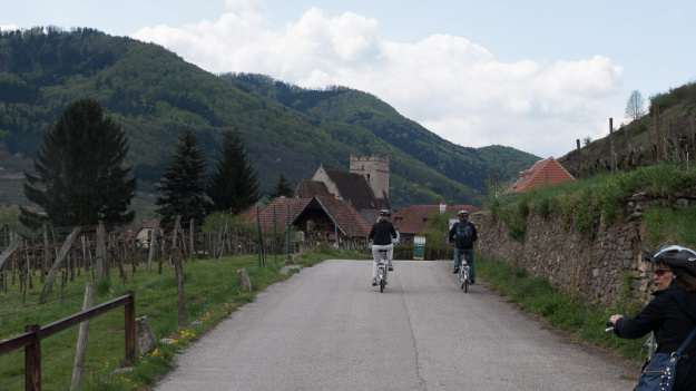 Cycling through the Wachau Valley, wine-producing country.  © 2015 Ralph Grizzle