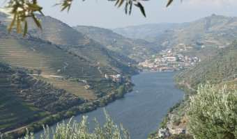 A Tale Of Two Rivers: The Danube vs. The Douro