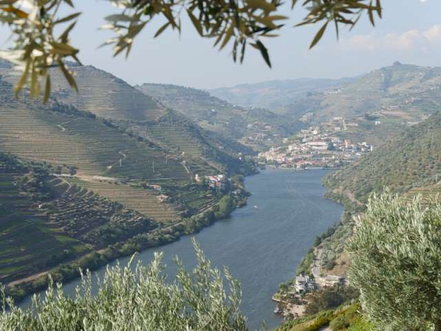The Douro River Valley, a UNESCO Heritage region. © 2014 Ralph Grizzle