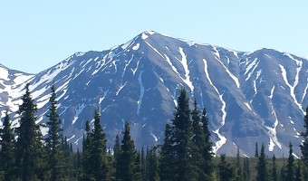 Alaska Cruises: A Denali Vacation