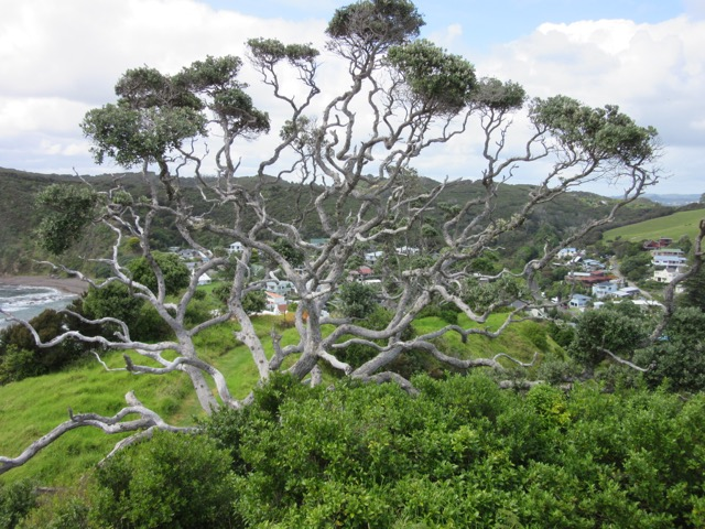 3 Russell Island