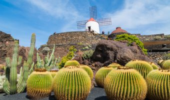 2017 Grand Voyage: The Canary Islands