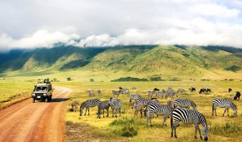 Explore Africa In-Depth with 2021 Grand Africa Voyage