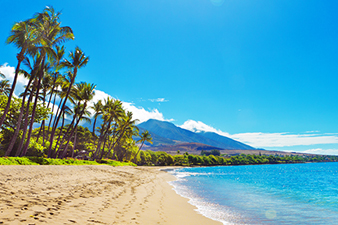 One of Hawaii's World Class Beaches