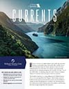 Cruise Specialists Currents
