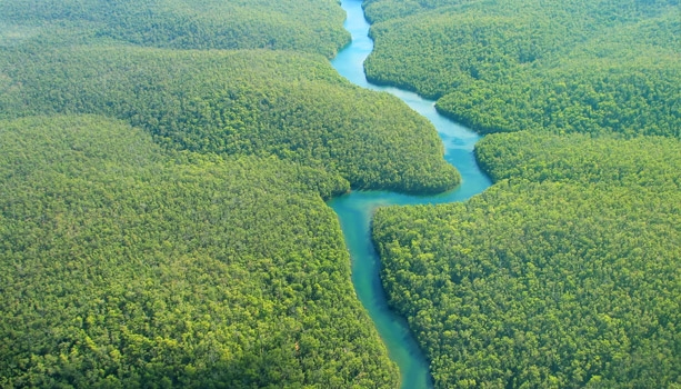 Sail deep into the heart of the Amazon rainforest! Departing Dec 17, 2014, this exotic holiday adventure includes a FREE Brazilian Visa package, $950 Shipboard Credit, & more!