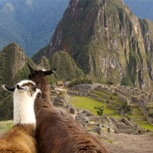 Luxury Cruise - Holland America Line, sailing to Mexico | South America  for 32-day Incan Empires